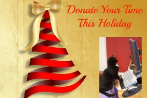 Outstanding-Contributor-Community-Donate-Charity-isdiva