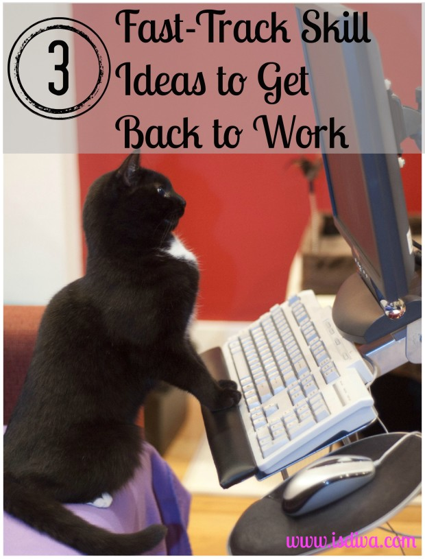 3 Fast Track Skill Ideas to Get Back to Work. Are you looking to get back to work but need to brush up on your skills? Here I have three skill sets you should work on immediately.