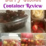My Cool Berry Global Container Review from ePackageSupply #review