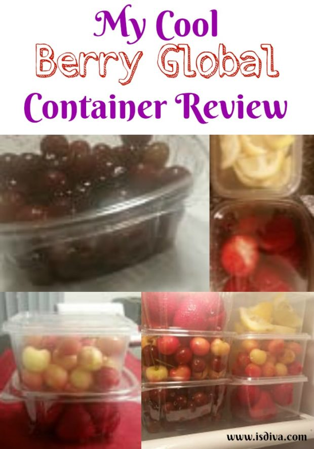 My cool berry global container review from epackagesupply review independent smart diva - How do i keep my container home cool ...